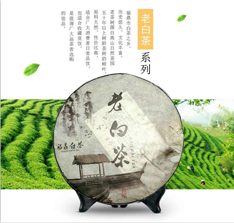 图8-老白茶.jpg